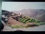 greek terraces