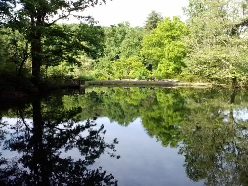 long mtn pond